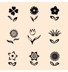 Flower set on retro background black symbols with vector