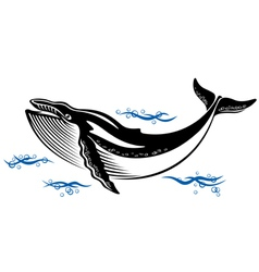 Big wild whale in ocean water vector