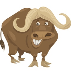 african buffalo cartoon vector image