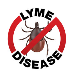 Lyme disease tick bite icon vector