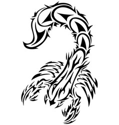 Tattoo in the form of the stylized scorpion eps vector