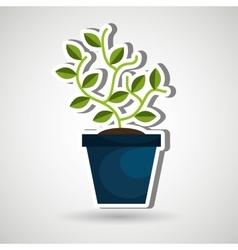 plant pot design vector image vector image