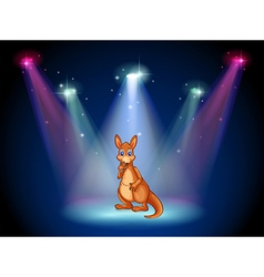 A stage with a kangaroo vector