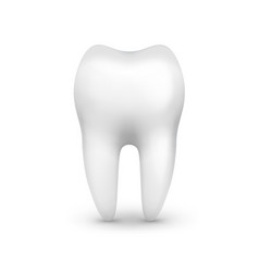 Single white tooth vector
