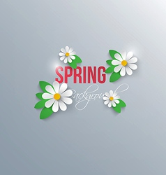 spring background 3 vector image