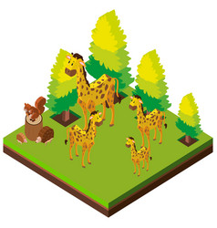 3d design for giraffes in the zoo vector image vector image