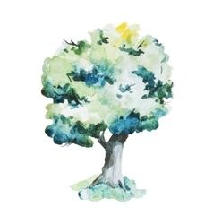 Watercolor trees vector image