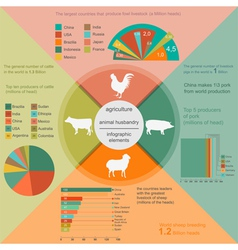 Agriculture animal husbandry infographics vector