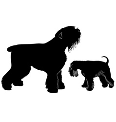 Miniature schnauzer and black terrier vector