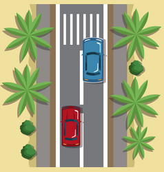highways top view cartoon vector image