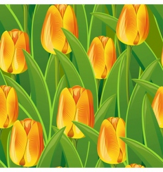 tulips pattern vector image
