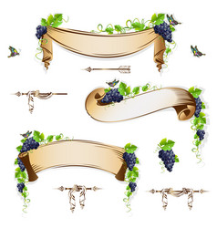 Set of vintage ribbons with grapes vector