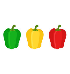 set of red yellow green sweet bell pepper flat vector image vector image