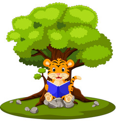 Tiger reading book and sitting on the stone vector