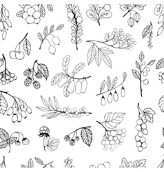Seamless background garden and wild hand-drawn vector