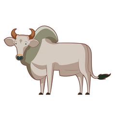 Cartoon standing zebu vector