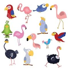 Set funny African birds vector image