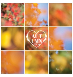 Set Autumn Backgrounds - 9 beautiful patterns vector image