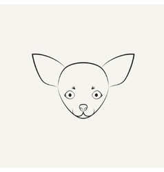 Chihuahua dog vector