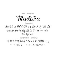 handdrawn script font brush style texture vector image vector image
