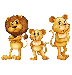 Lion family standing together vector