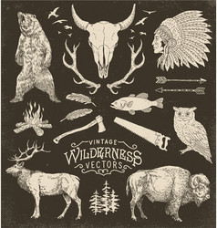 Vintage wilderness set vector
