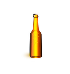 realistic beer glass bottle mochup vector image vector image
