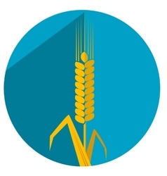 Flat with shadow icon ear wheat vector