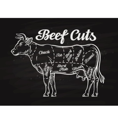 Beef cuts template menu design for restaurant or vector