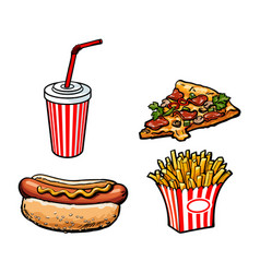 Potato fry soft drink cup pizza hot dog vector