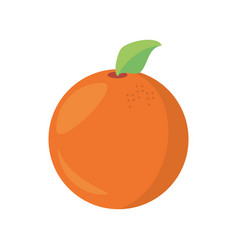 Orange fruit food healthy vector