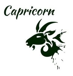 Zodiac sign capricorn vector