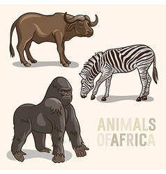 African animals set3 vector