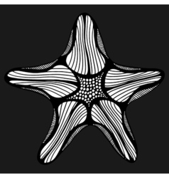 Black contour starfish vector