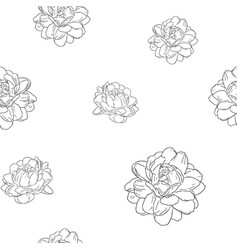 jasmine flower use in traditional mothers day vector image vector image
