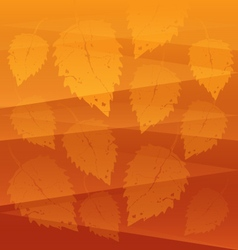 Orange leaves background vector