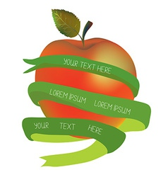 Apple with ribbon for the text - organic or health vector image