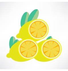 Lemon icon vector