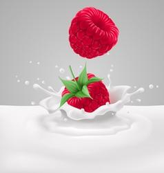 Raspberries with milk vector image vector image