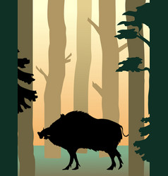 wild boar in the forest vector image vector image
