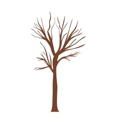 Tree trunk with branchs without leaves vector