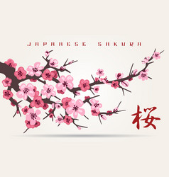 Japan cherry blossom tree branch vector
