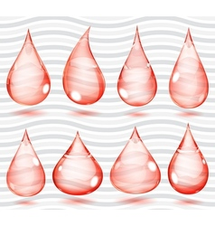 Transparent red drops vector