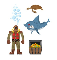 Marine set a diver and shark sea turtle and vector