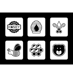 Honey concept icons set vector