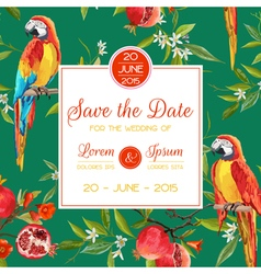 Invitation Congratulation Card Tropical Birds vector image vector image