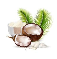 Coconut realistic vector