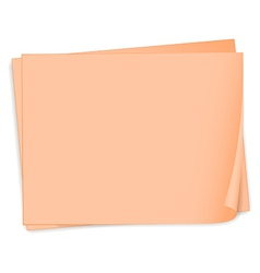 Empty pieces of papers vector image