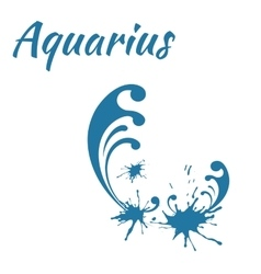 Zodiac sign aquarius vector