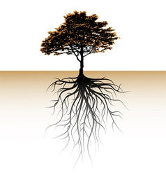 A tree with a visible root vector image